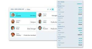dynamics365-business-central-entrega-proyectos